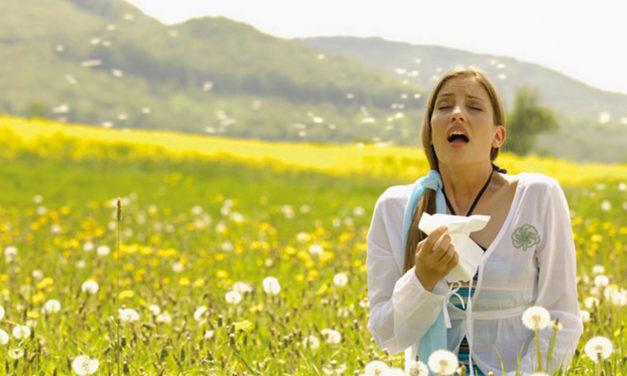 Allergie respiratorie: malattie di serie B