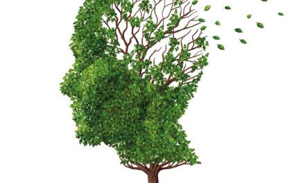 L'idrocefalo normoteso:<BR>una demenza prevedibile