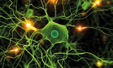 Parkinson: nuovi farmaci. <BR>Pisa nella ricerca europea