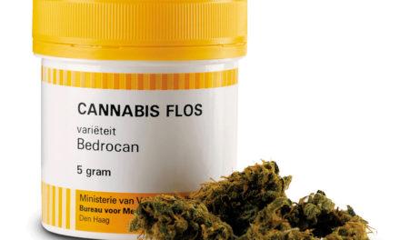 Una sorpresa inaspettata:<BR>cannabis, la tisana terapeutica