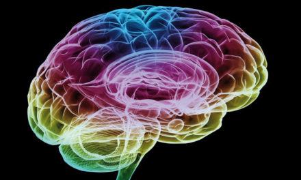"""Come il cervello """"vede"""" il cibo"""